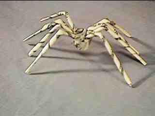 Tasty spider!